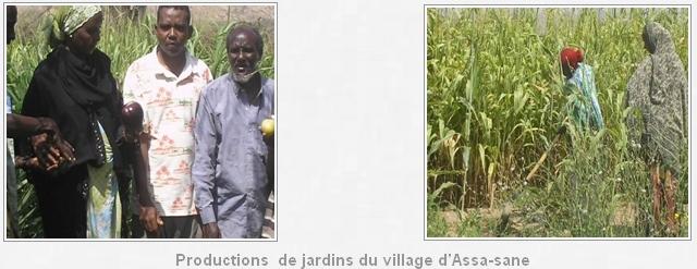 potentialité_agriculture